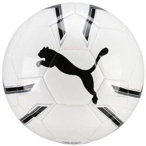 Image of   Football PUMA PRO TRAINING 2 MS 082819 01