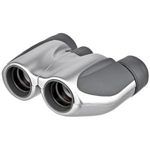 Image of   8x21 DPC I Silver kikkert Porro Sølv