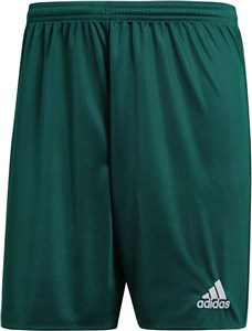 PARMA 16 SHORTS M Male Green