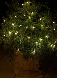 Image of   30830 dekorativ belysning Grøn 40 Lampe( r) LED