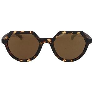 Image of   Solbriller til kvinder Adidas AOR018-148-009